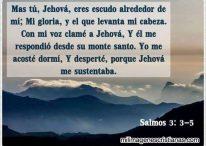 Tú, Jehová, eres escudo alrededor de mí